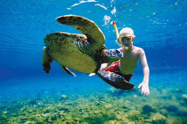 al-cielo-snorkel