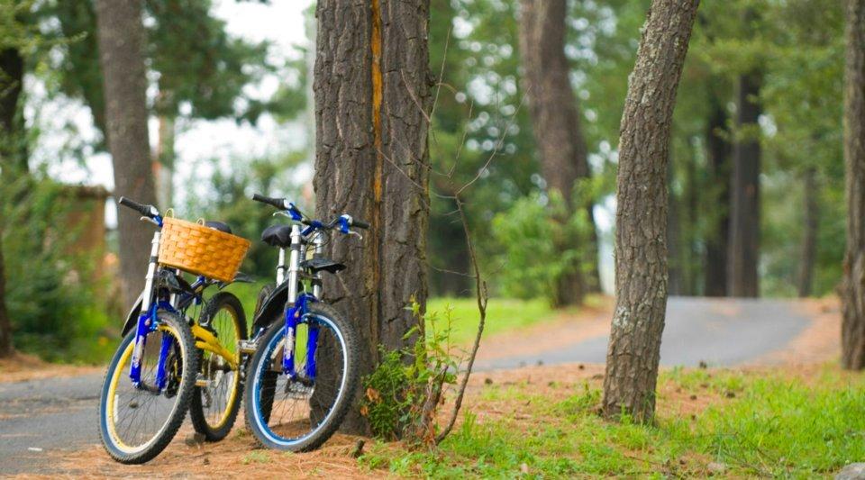 bicicletas-san-bernardo
